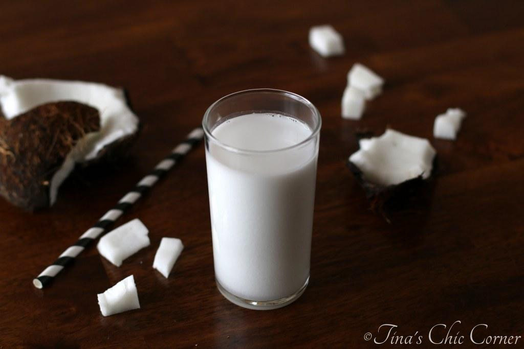 Homemade Coconut Milk – Tina's Chic Corner