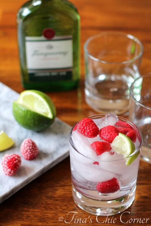 03Gin and Tonic